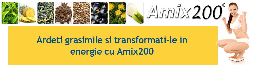Amix 200 comanda
