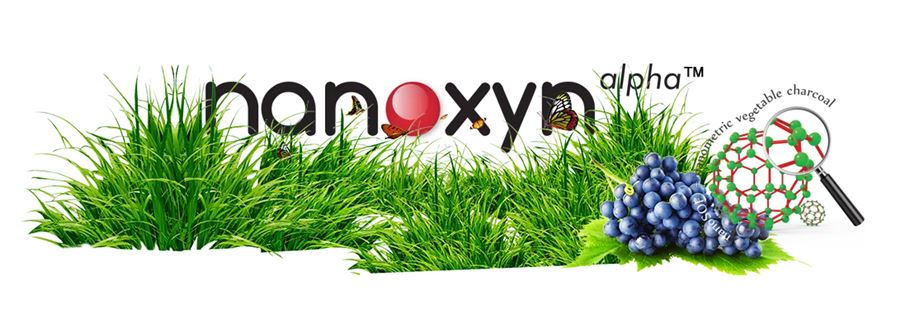 Nanoxyn Alpha pret